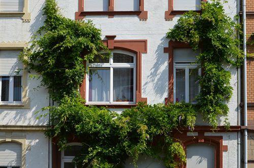 万科郁亮:长租公寓需解决就学问题 否则租售并举将沦为空话