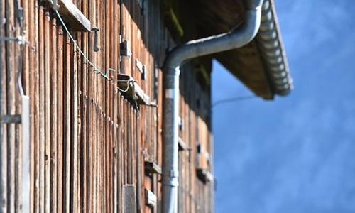共享农屋来了 闲置农房云平台欲改造闲置空间