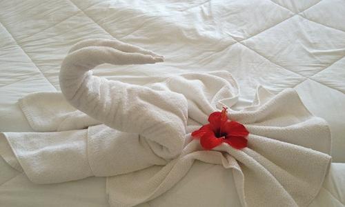 淘汰的酒店床垫太多 希尔顿推出回收再利用计划