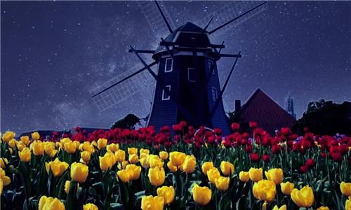 为什么荷兰的农业特色小镇能做的有声有色?
